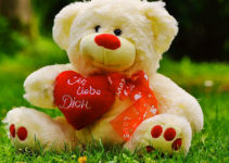 teddy bear Images 9