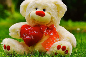 259+ Teddy Bear Images Download