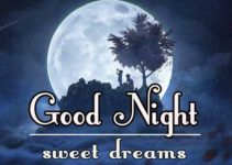545+ Best Good Night Images Download