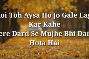 English Shayari Photo 17