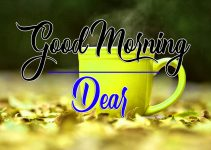 Good Morning Photo Images Hd