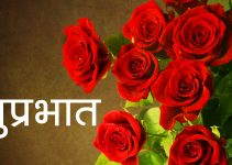 217+ Red Rose Suprabhat Images HD For Girlfriend Download