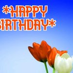 Happy Birthday Wishes Wallpaper Free Download