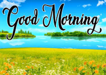 Good Morning Beautiful Images HD Download