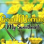 Flower Good morning Images 101