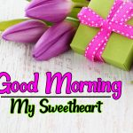 Sweet Heart Flower Good morning Pics Images Download
