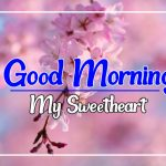 Flower Good morning Pics Free Download