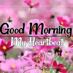 Flower Good morning Images 44