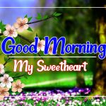 Best Flower Good morning Pics Images Download