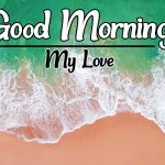 Flower Good morning images for Whatsapp