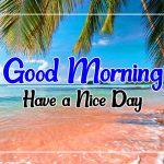 Flower Good morning Wallpaper Download