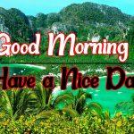 Best New Flower Good morning Images Download