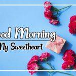 Flower Good morning Photo Download Free