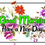 Flower Good morning Images 76