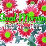 Flower Good morning Photo Free HD