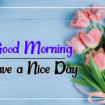 Best New Flower Good morning Pics Images Download