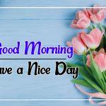 Flower Good morning Images 81