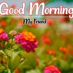 Flower Good morning Images 88
