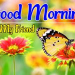 Best Top Flower Good morning Pics Images Download