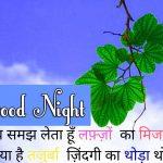 Hindi Shayari Good Night Images 10