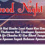 Hindi Shayari Good Night Images 33