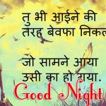 Hindi Shayari Good Night Images 55