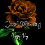 Morning Wishes Images With Red Rose 1