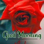 Morning Wishes Images With Red Rose 5