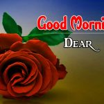 Morning Wishes Images With Red Rose