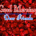 Red Rose Good Morning Images 10