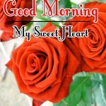 Morning Wishes Images With Red Rose Pics Wallpaper Free