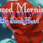 Morning Wishes Images With Red Rose Photo Free Download