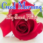 Red Rose Good Morning Images 14