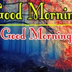 Red Rose Good Morning Images 15
