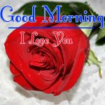 Red Rose Good Morning Images 16