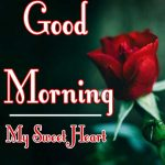Red Rose Good Morning Images 23