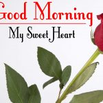 Red Rose Good Morning Images 27