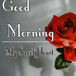 New Best Morning Wishes Images With Red Rose Pics Download