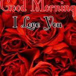 Morning Wishes Images With Red Rose Pictures Free