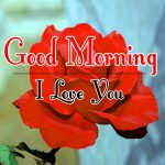 Best New Morning Wishes Images With Red Rose Pic Download
