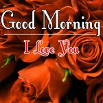 Morning Wishes Images With Red Rose Wallpaper Download