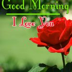 Morning Wishes Images With Red Rose Pics Free
