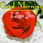 Red Rose Good Morning Images 50