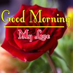 Morning Wishes Images With Red Rose Wallpaper HD