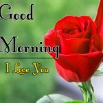 Red Rose Good Morning Images 54