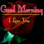 Morning Wishes Images With Red Rose Pics for Facebook