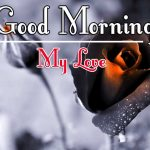 Red Rose Good Morning Images 59