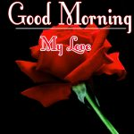Best Free Morning Wishes Images With Red Rose Wallpaper Download
