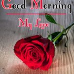 Red Rose Good Morning Images 63