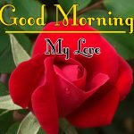Morning Wishes Images With Red Rose Pics Download for Facebook
